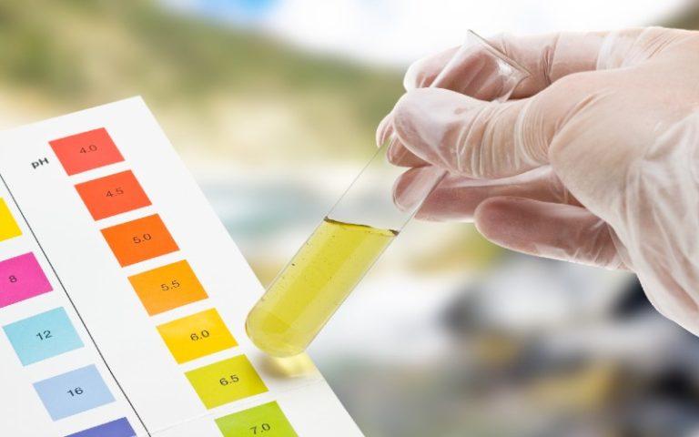 Water Test in Aquaponics