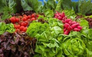vegetables-905382_1280